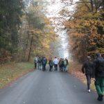 im Naturpark Hirschwald