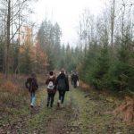 im Hirschwald unterwegs